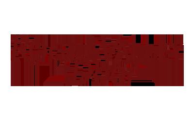 rogue-v.png